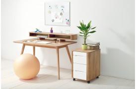 Boligindretningen af kontoret eller hjemmekontoret med møbler fra Gazzda.
