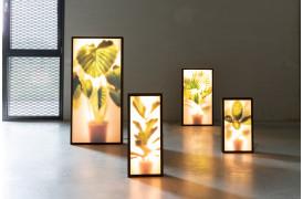 Inviter naturen til at blomstre og berige dit hjem med Zuiver Grow lamper.