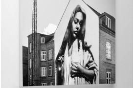Jomfru Maria akustikplade