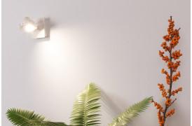 Her ses et billede af Luci spot med en pære i hvid fra Zuiver.