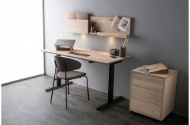 Smart Desk hæve sænke skrivebordet er en del af en kontorserie fra Wood by Kristensen.