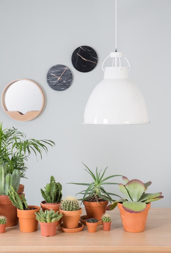 Planter i boligen er meget trendy lige nu, hvor man her på billedet kan se nogle planter i en boligindretning.